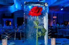 WOW! Rose Frozen in Ice as Centerpiece! Copied from Biz Bash.