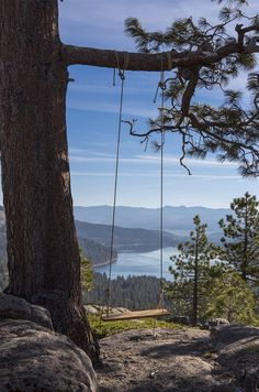 Swing with a view ~ would Love to have a cabin here!