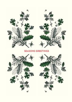 It's cold outside Holiday Cards by MOO. Celebrate the season with these beautiful botanical inspired Greeting Cards that bring wintery flora to life - perfect to send to your clients or customers.