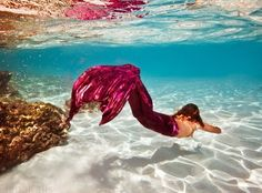 Underwater worlds by Elena Kalis                                                                                                                                                                                 More
