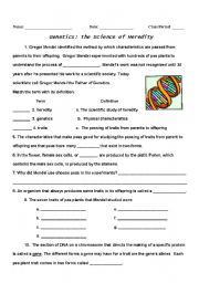 Simple Genetics Practice Problems Worksheet