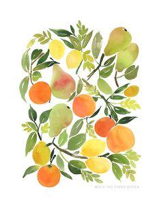 Watercolor fruits by Yao Cheng.