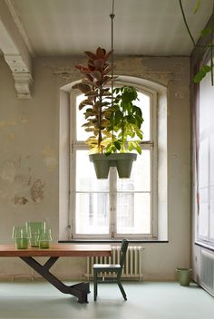 bucketlight tropical plant fixtures by roderick vos incorporates built-in powerstation