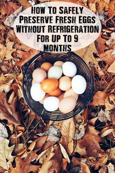 How To Safely Preserve Fresh Eggs Without Refrigeration For Up To 9 Months - Store eggs without refrigeration like we did back in the day! Eggs go on sale depending on what time of the year you are, so stock up and preserve them. Do you have any other tips, ideas or hacks to do with eggs?