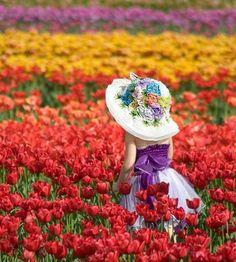 Colors Of The Day   Photo  by   @zihniguler_  Congratulations!  Selected by   @zuckerwatte1907  Follow  @Colors_of_day Tag  #Colors_of_day    #Colors_of_day #igphotoworld #ig_world_colors #gulumseaska #ig_costarica #awesomepix #ig_portugal #sengajaphoto #wonderful_places #beautifuldestinations #fantastic_earth #comeseeturkey #hot_shotz #photo_turkey #bestvacations #ig_exquisite #rockin_shotz #photooftheday #tgif_longxpo #magicpict #longexpoelite #my_sunset #instaitalia #awesome_photographers…