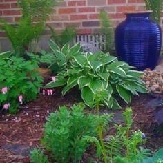East facing flower bed Outdoor Pots, Outdoor Ideas, Outdoor Living, Garden Projects, Garden Ideas, East Facing Garden, Backyard Stream, Front Flower Beds, My Secret Garden