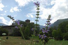 Fenis il #castello le#mura la#storia #hcdc #vda da vivere