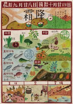 seed design - Chinese solar term calendar Love Illustration, Graphic Design Illustration, Taiwan Image, Chinese Design, Graduation Project, Beautiful Posters, Pen And Watercolor, Print Layout, Graphic Design Posters
