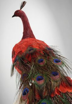 "I have never seen a red peacock.jw- Large 60"" Red Peacock Bird 129$ Artificial Large Birds"