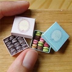 Stéphanie Kilgast's miniatures are unbelievable ~ including plates of sushi that could fit on your finger nail... boxes of laudree macaroons... and donuts that could sit on a match head