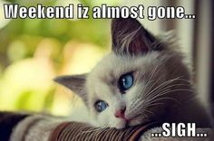 weekend's almost gone
