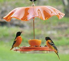 We don't have orioles, but I love this feeder.