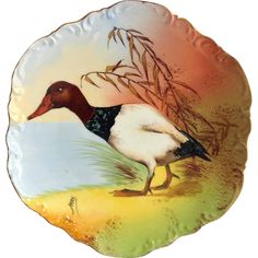 Coronet Limoges Game Bird Plate Canvasback Duck Signed Max Early 1900s from maggiebelles on Ruby Lane