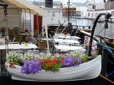 fiori in barca..   Flickr - Photo Sharing!