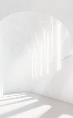 All white with white light All White, Pure White, White Light, Pinterest Color, White Space, Shades Of White, Deco Design, White Aesthetic, Corporate Design