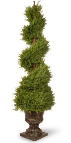 Juniper Spiral Tree in Decorative Urn | Wayfair