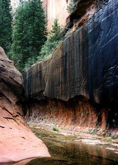West Fork (Oak Creek) Trail