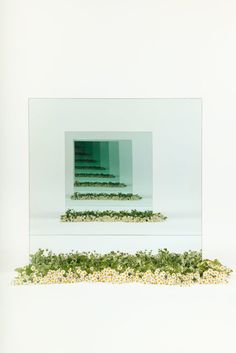 Josef Albers Meets Yayoi Kusama in a Series of Infinity Mirror Installations By Sarah Meyohas – Sight Unseen - Mirror Ideas Flower Installation, Light Installation, Art Installations, Infinity Spiegel, Infinite Mirror, Instalation Art, Josef Albers, Colossal Art, Mirror Art