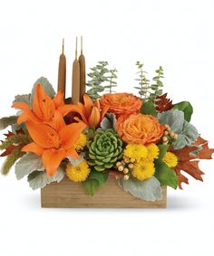 Fall Bamboo Garden   Zen Harvest! You can't help but fall into a deep state of relaxation when you feast your eyes on this striking centerpiece. This artistic arrangement will enchant with shades of peach, orange and green - combining roses, lilies and even a succulent plant! Hand-delivered in a natural-toned bamboo rectangle. #EllentonFlorist Thanksgiving Flowers, Thanksgiving Centerpieces, Orange Roses, Peach Orange, Yellow, Fast Flowers, Flowers Today, Order Flowers, Send Flowers