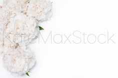 #349 KATE MAXWELL Styled Mockup by KateMaxStock on @creativemarket