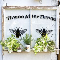 Upcycled Window Herb Planter