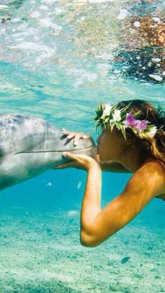 Swimming in the crystal clear blue beach sea ocean water of Hawaii with dolphins and a lei - travel explore the world go on adventure Vacation Destinations, Dream Vacations, Vacation Spots, Summer Vacations, Hawaii Vacation, Vacation Places, Hawaii Travel, Delphine, Ocean Life