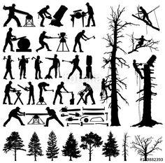 「treeclimber」の画像検索結果