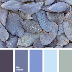 Color Palette #2488