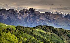 forest mountain - Recherche Google