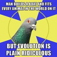 Atheism, Religion, God is Imaginary, Noah's Ark, Science, Evolution, Humor. Man builds a boat and fits every animal in the world on it but evolution is plain ridiculous.