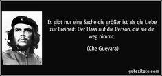 Es gibt nur eine Sache die größer ist als die Liebe zur Freiheit: Der Hass auf die Person, die sie dir weg nimmt. (Che Guevara)