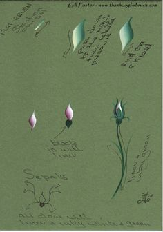Painted rosebud worksheet - decorative painting    Learn to paint with us! With our step-by-step pattern based methods, anyone can become a Master Decorative Artist. Learn more at www.decorativepainters.org