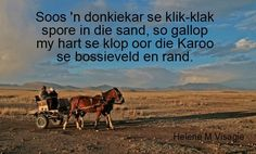 The Karoo, South-Africa BelAfrique - Your Personal Travel Planner… Beaches In The World, Countries Of The World, The Beautiful Country, Beautiful Places, Apartheid Museum, South Afrika, Farm Paintings, Africa Destinations, Windmill
