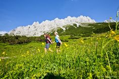 Plan Your Trip: ✓ Skiing ✓ Cities ✓ Lakes ✓ Hiking ✓ Spa ✓ Restaurants ✓Practical Travel Information ✓ Insiders' Tips ➢ Find out Austria Holidays, Hidden Places, Future Travel, Travel Information, Plan Your Trip, Travel Guide, Hiking, Explore, Mountains