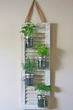 Recycle your old shutters with these fantastic tips and tricks. Recycle old shutters with these fantastic projects and DIY crafts! Mason Jar Herbs, Pot Mason Diy, Mason Jar Herb Garden, Mason Jar Crafts, Mason Jars, Herbs Garden, Mason Jar Planter, Succulents Garden, Shutter Projects