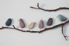 Thought for today - Pebble Art of Nova Scotia