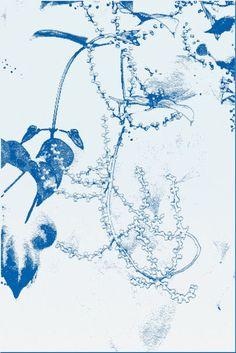 'floral blau' von Rudolf Büttner bei artflakes.com als Poster oder Kunstdruck $18.02