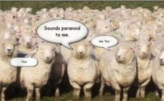 Some of the Sheep Are No Longer Asleep:Additionally, I have happened across some information which is suggestive of the fact that globalists are going to be collecting much more than gold, they will soon be collecting people