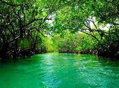 Giligan's Island, Guánica, Puerto Rico