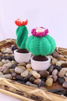 Cactus Mini listo (4)
