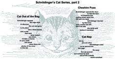 Schrodinger's Cat Series, part 2