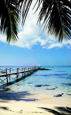 escape to paradise