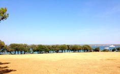 Brijuni | Croatia Croatia, Islands, Dolores Park, National Parks, Beach, Water, Places, Summer, Outdoor