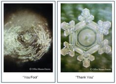 dr. emoto's water crystal experiment shows effect of spoken energy on water. humans are over 80% water.