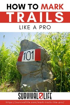 Learning how to mark trails is not as difficult as you may think. With a few basic pointers, anyone can learn how to mark a trail in the woods and provide a reliable route for hikers for years to come. All you need is a hatchet, some paint, and a sense of care and genuine interest. #survivallife #survival #preparedness #survivalist #prepper #camping #outdoors #spring #outdoorsurvival #hiking #hikingtrail #marktrails #trailmarks Survival Life, Survival Skills, Like A Pro, Camping Outdoors, Outdoor Survival, All You Need Is, Hiking Trails, Pointers, Woods