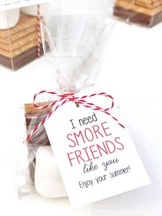 S'more Friends Like You- a little, inexpensive year end gifts to celebrate those friendships made during the school year and the perfect bite of summer