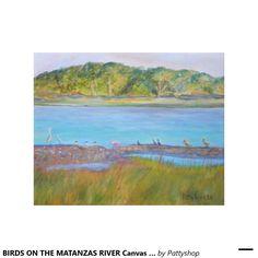 BIRDS ON THE MATANZAS RIVER Canvas Print