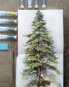 "13.6k Likes, 48 Comments - Watercolor illustrations (@watercolor.illustrations) on Instagram: "" Watercolorist: @evgenyasheglova #waterblog #акварель #aquarelle #drawing #art #artist #artwork…"" #watercolorarts"