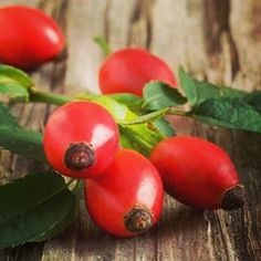 Once the rose flower has bloomed, and all the petals have fallen off, the hip is picked and used in a wide variety of preparations. Rose hips are the best source of vitamin C; they contain 50% more vitamin C than oranges. visit us at www.indiyra.com