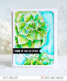 May 2017 Release Day 4: Fairy Dust   Succulent Cover Plate   Giveaway
